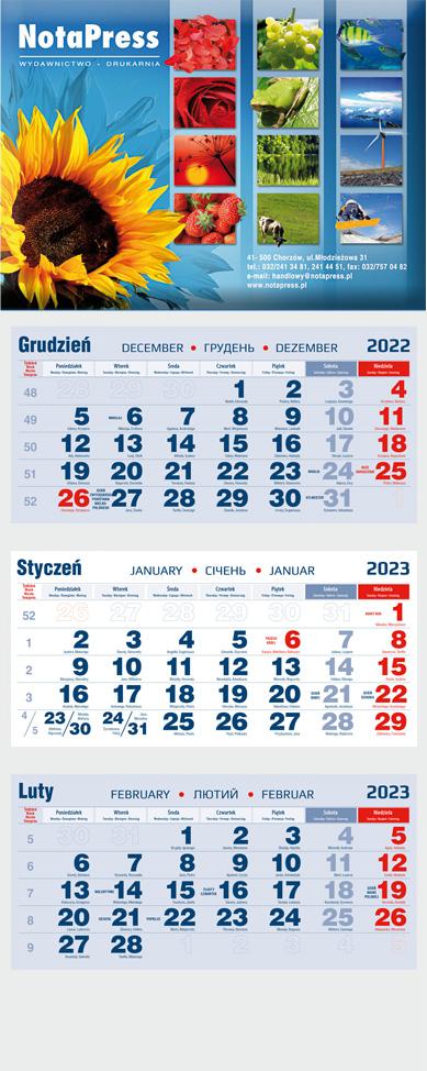 kalendarium granatowo-czerwone na kalendarz trójdzielny